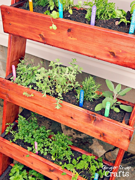 herb garden digin - Diy Herb Garden Ideas