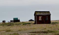 dungeness sept 2011 032