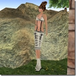 Complete outfit Dusty2_001_004