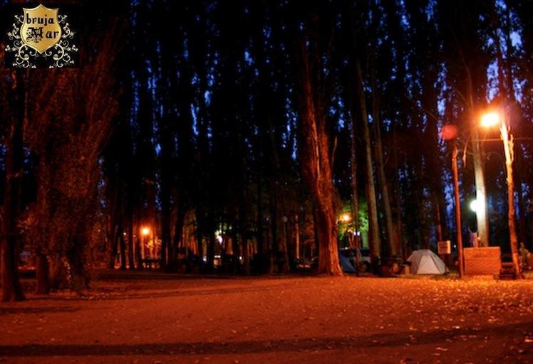 Argentina,Miramar,bosqueNocturno-debrujaMar-0720