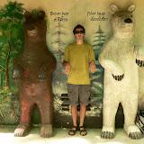 Le Ben Bear est en voie de disparition