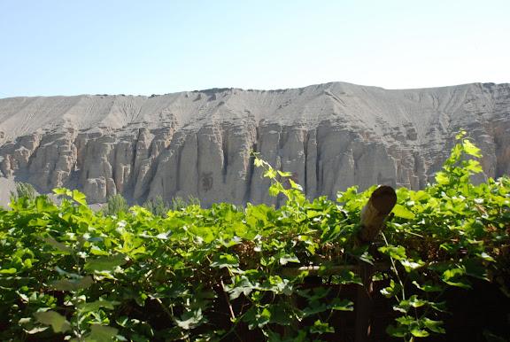 Turfan - Putaogou Montagne par-delà vignes