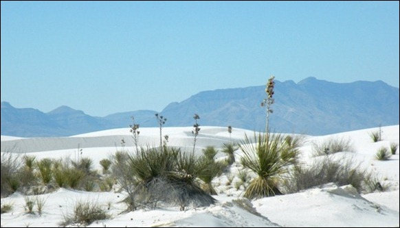White_Sands_National_Monument_07