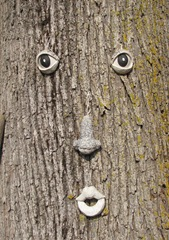 Wellfleet 8.18.2012 face on tree at gift shop