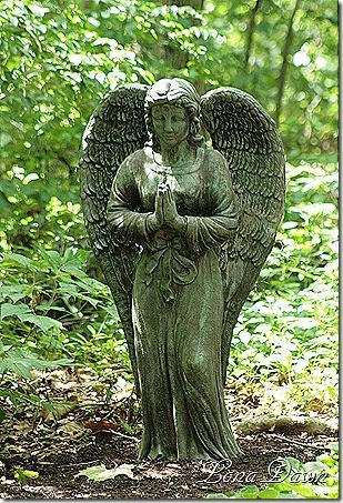 EJC_Angel