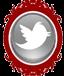 DIY-twitter-button1