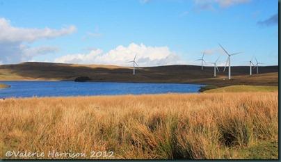 1-windfarm