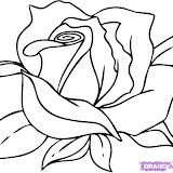how-to-draw-a-cartoon-rose-step-6.jpg