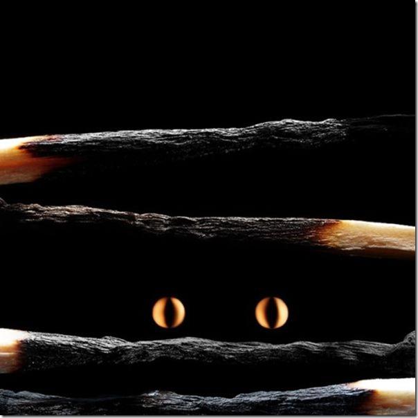 matchstick-masterpiece-art-3