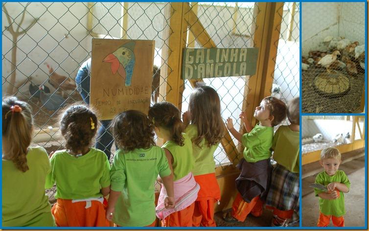 2012_04_25_Vira_Virou_Fazendinha_Seleção_0126