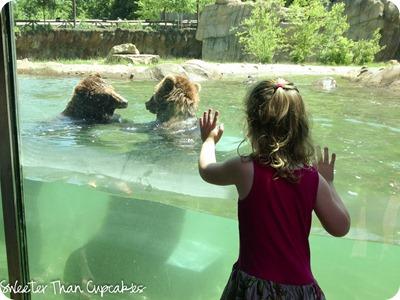 zoo1_lrw