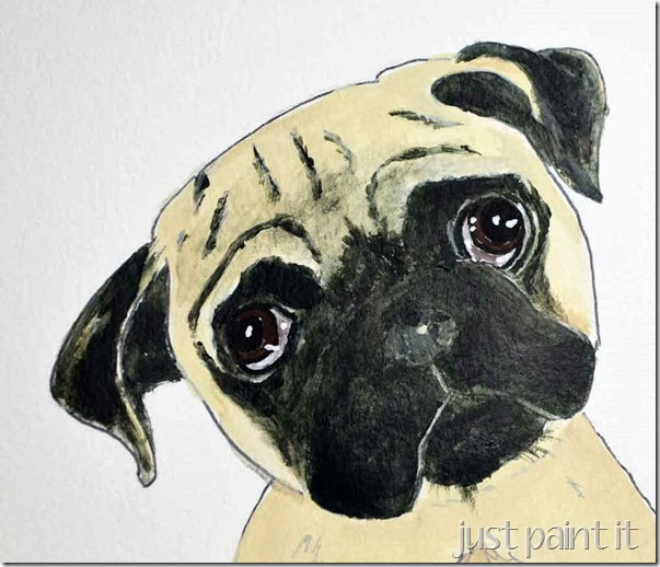 pug-illustration-D