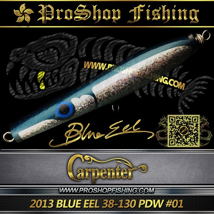 Carpenter 2013 BLUE EEL 38-130 PDW #01 (5)