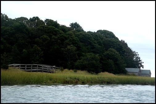 Kayaking Salt Pond & Nauset Marsh 051