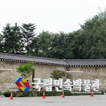 the national folk museum of Korea in Seoul, Seoul Special City, South Korea