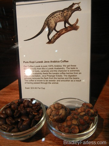 Pure Kopi Luwak Java Arabica Coffee