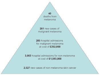 Risk Pyramid for Skin Cancer (based on 2008 data).JPG