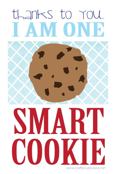 One-Smart-Cookie