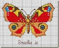 farfalle - Cópia (2)