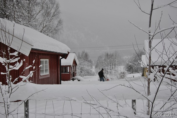 Winterdag 010