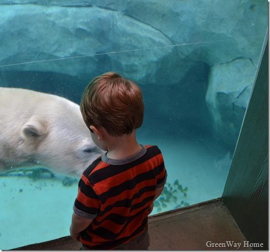 Zoo 102