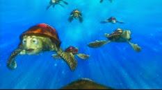 34 les tortues