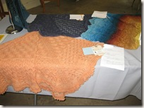 skein_and_garment_shawl_5