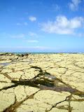 South Island - Kaikoura
