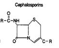 Cephalosporin