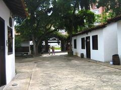 Santos 355