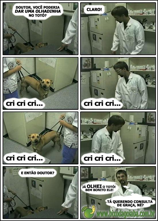 pegadinha-veterinario