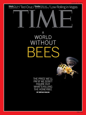 TIME magazine cover for the 19 August 2013 issue: ' A world without bees'. Photo: Hannah Whitaker / TIME