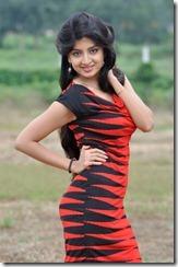 Poonam_Kaur_latest_photoshoot_pics