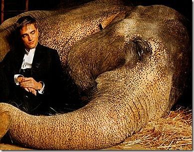 agua_para_elefante01