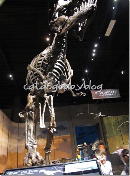 2013-03-29 Tellus Museum (55)
