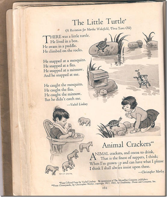 Poems - Little Turtle - Animal Crackers