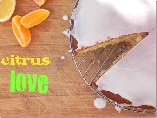 torta-agli-agrumi-citrus-olive-oil-cake-5