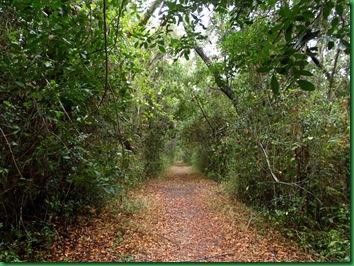 Mrazek Pond & Snake Bight Trail 030