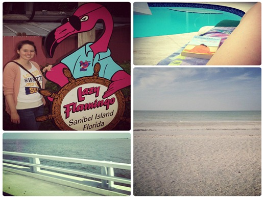 sanibel collage