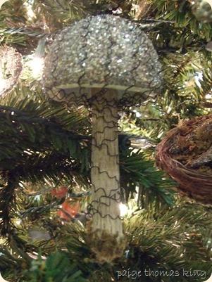 christmas 2012 034