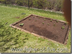 Garden - May