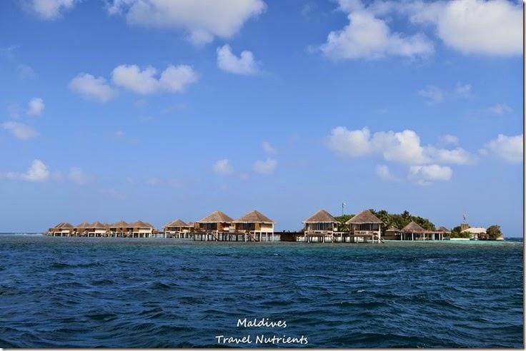 馬爾地夫居民島Mahibadhoo- Amazing Guesthouse (5)