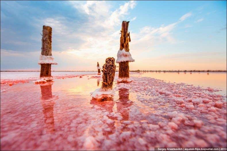 sivash-salt-lagoons-20