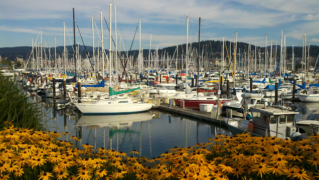 July/August 2011 1st Place  /Bellingham Marina on an August afternoon.  /Credit: Joseph Wilson