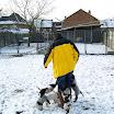 Honden » K-nest pups Tria en Haiki 2011