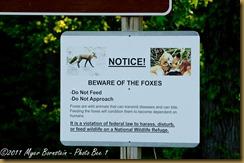 fox sign _D075208 Bombay Hook  May 10, 2011 NIKON D7000