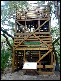 03 - Tree Canopy Walkway