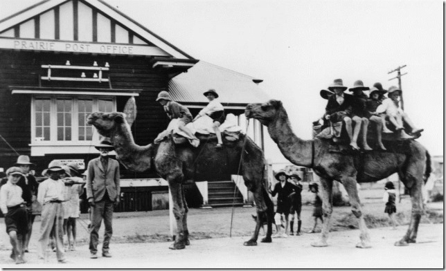 StateLibQld_2_189099_Basha_Gould_and_his_camels_with_children_from_the_Prairie_area,_1932