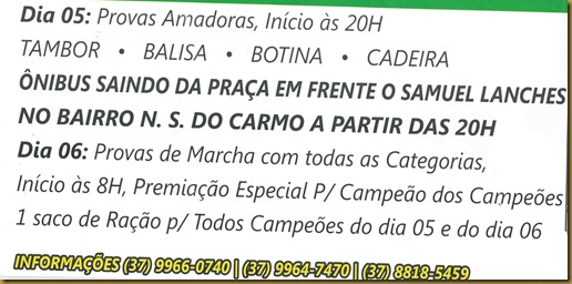 festa_cavalo_cajuru (4)