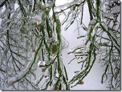 snowstorm1201_41